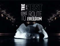 The nest – one route to freedom / Trial One
